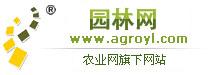 北京pk10信誉平台网